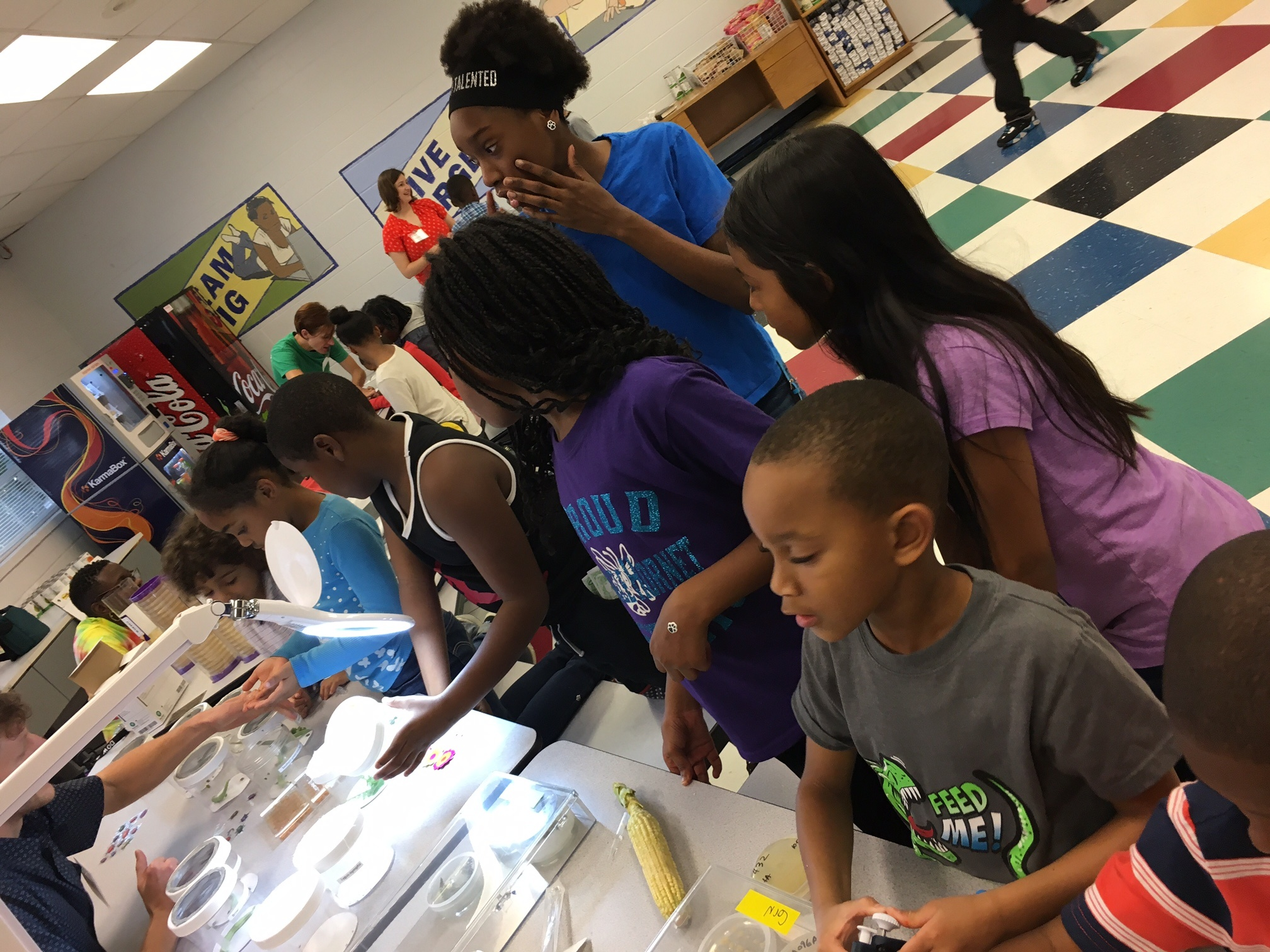Students crowd around tables filled with bugs, plants, fungi, and experiment supplies ready to do science.